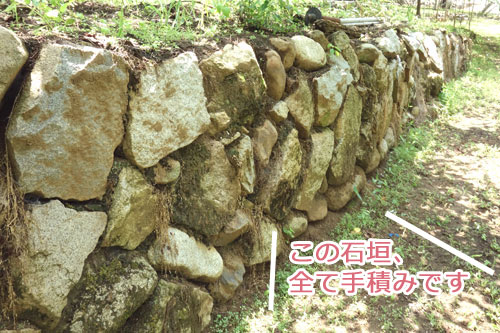 岩崎園にある手積みの石垣