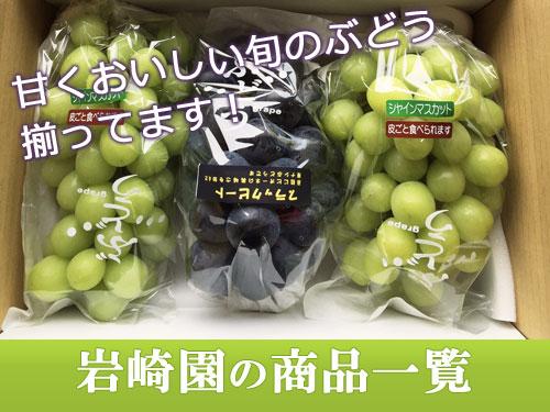 甘くおいしい旬のぶどうが揃っています。岩崎園の商品一覧